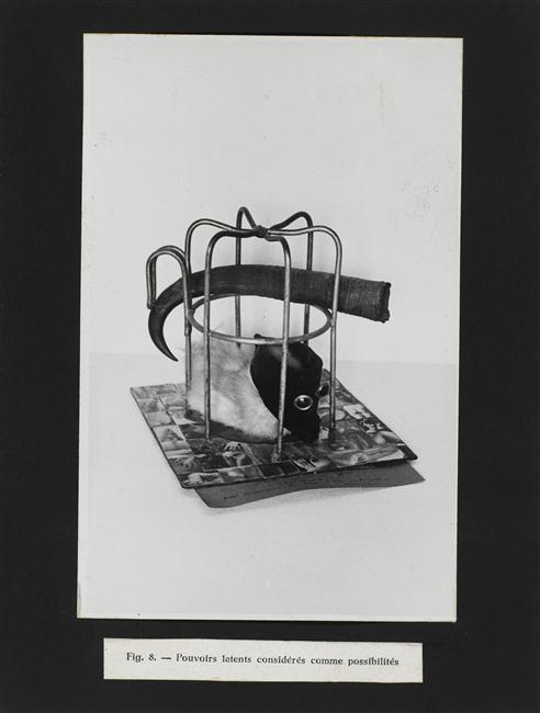 Unul dintre OOO, object objectivement offert, care ilustrează și coperta cărții Le Vampire Passif