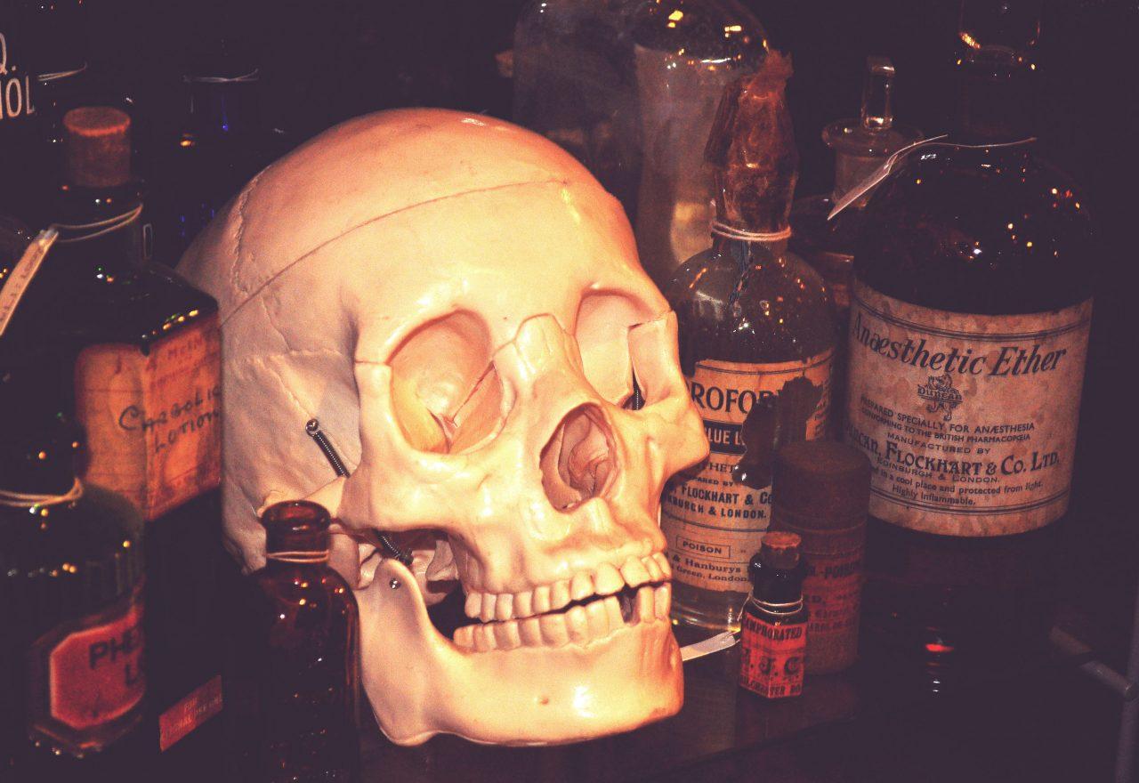 11__skull