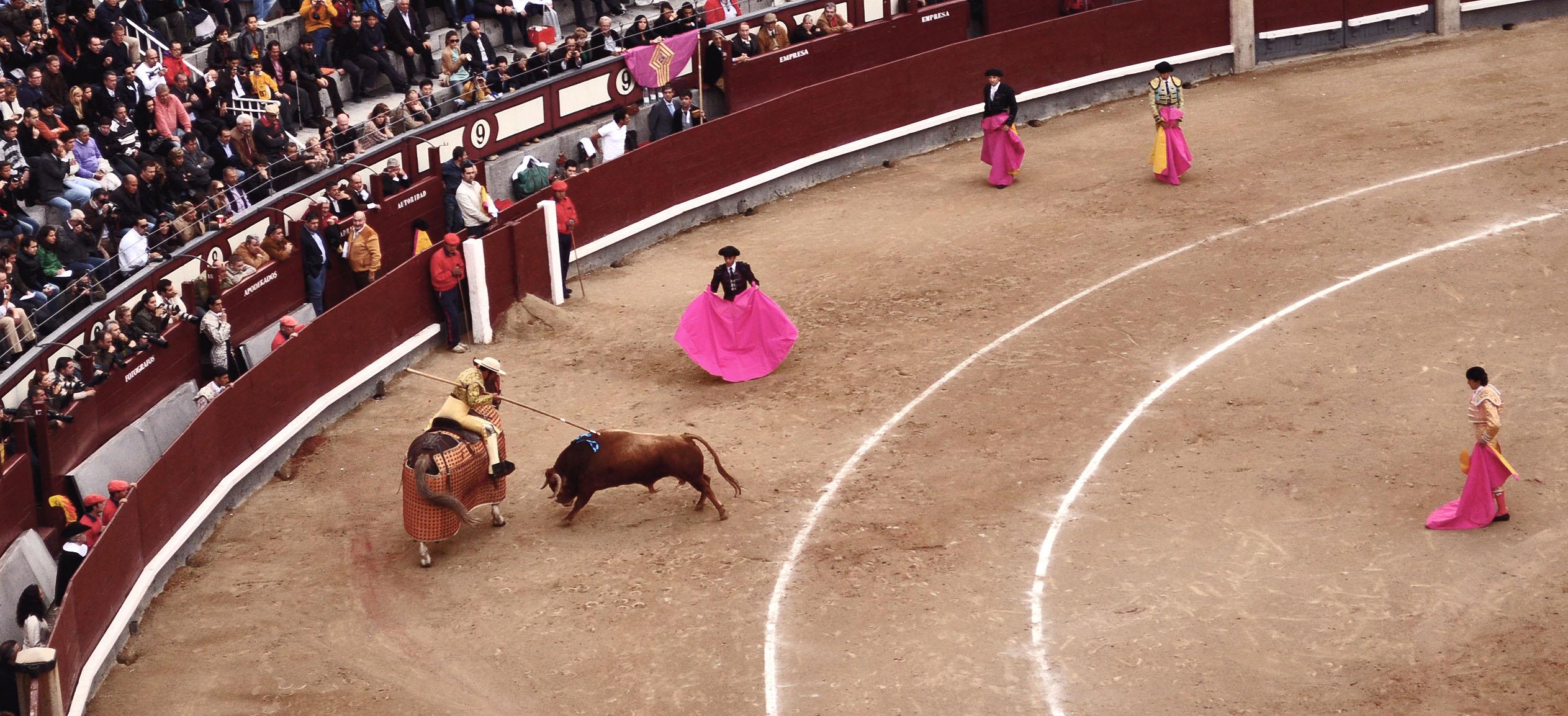 madrid-corida-with-horse