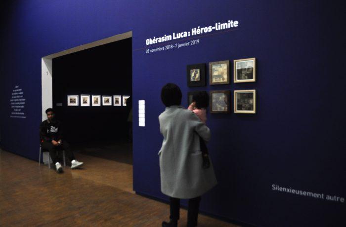 Gherasim Luca-Intrare Expo-Raluca Turcanasu