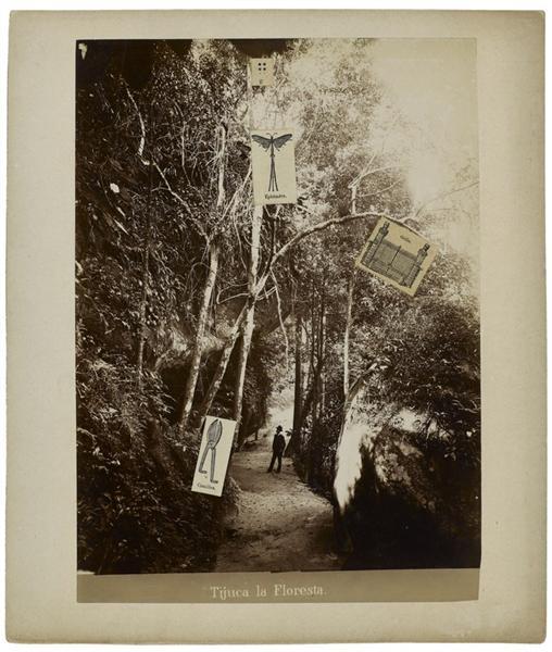 tijuca-la-floresta-1970.jpg!Large
